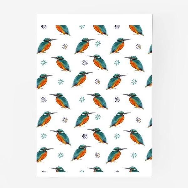 Постер «Зимородки »