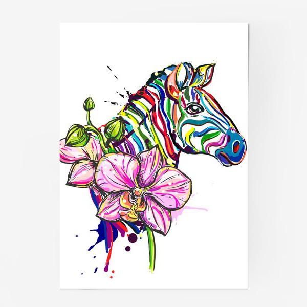 Постер «Разноцветная зебра и орхидея»