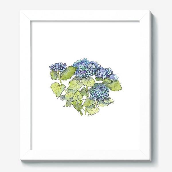 Картина «Цветок гортензия голубая. Акварельный летний ботанический скетч на белом фоне»