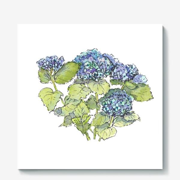 Холст «Цветок гортензия голубая. Акварельный летний ботанический скетч на белом фоне»