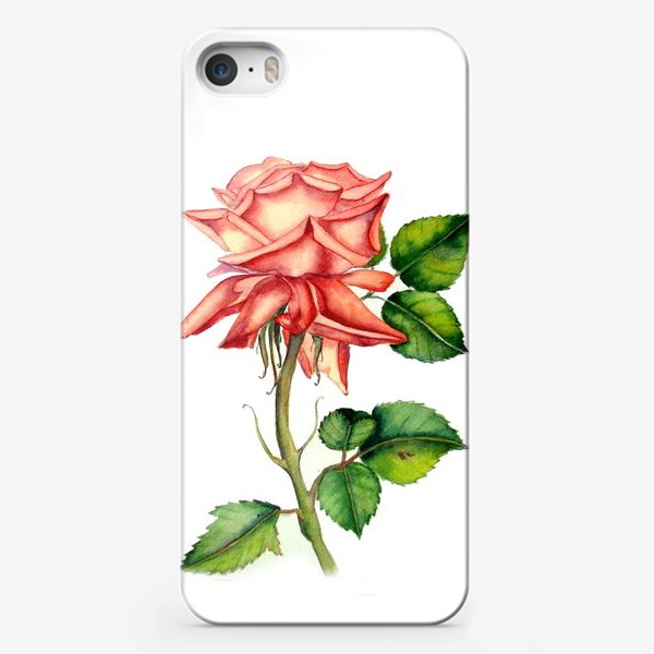 Чехол iPhone «Летняя роза»