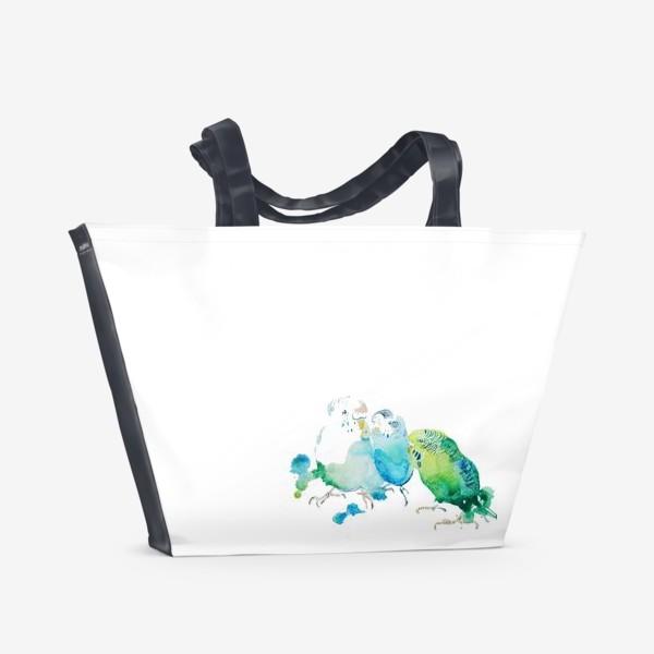 Пляжная сумка «sweety parraket»
