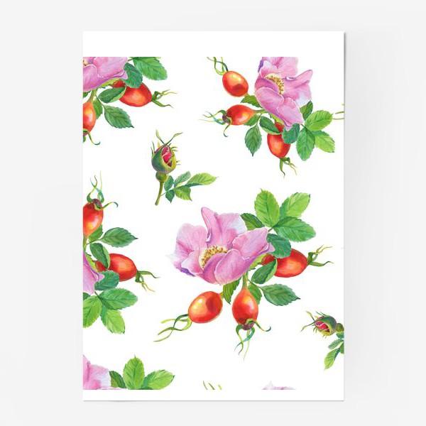 Постер «Цветы и ягоды шиповника.Бесшовный узор.»