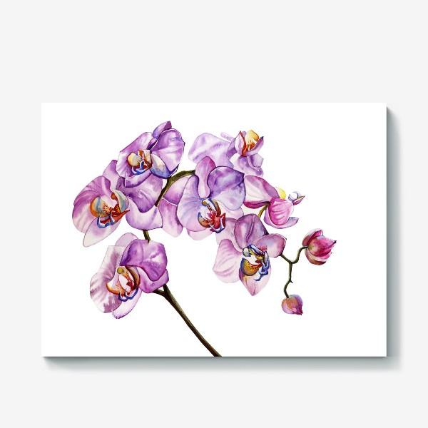 Холст «орхидейка»