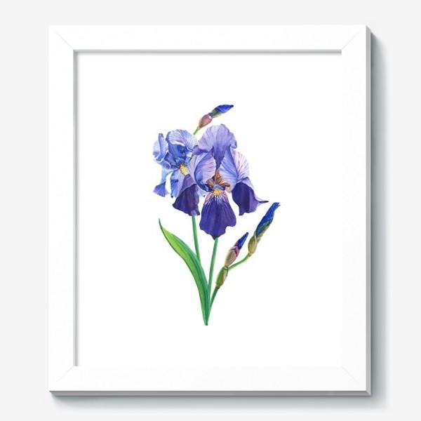 Картина «Фиолетовые ирисы.»