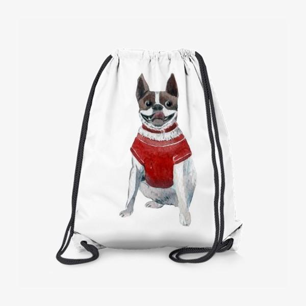 Рюкзак «Бульдог в красной майке»