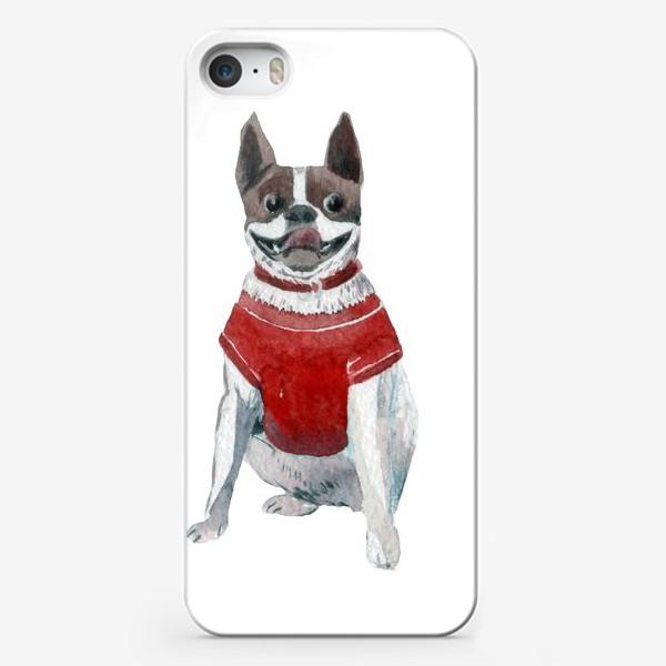 Чехол iPhone «Бульдог в красной майке»