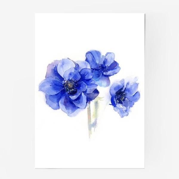 Постер «Синие цветы Анемоны»