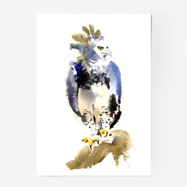 печать постер орел это