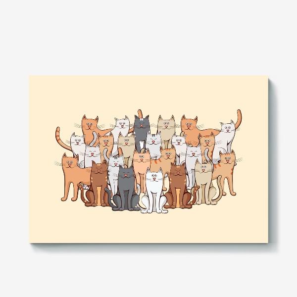 Холст «Коты»