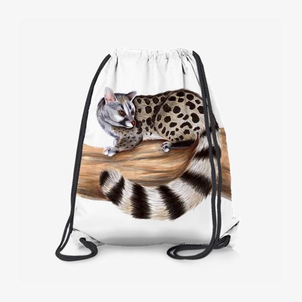 Рюкзак «Африканская кошка циветта»