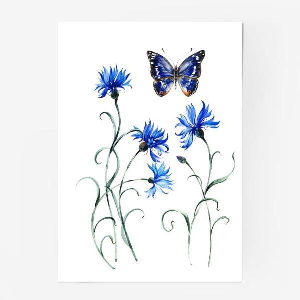 Постер «Васильки и бабочка»