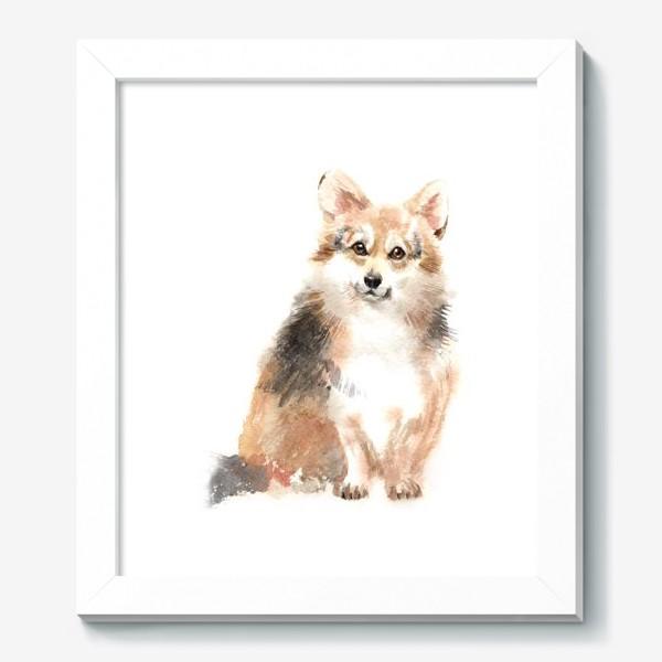 Картина «Собака Корги»