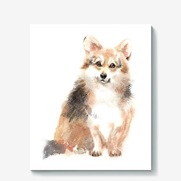 Холст «Собака Корги»
