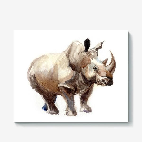 Холст «Носорог»