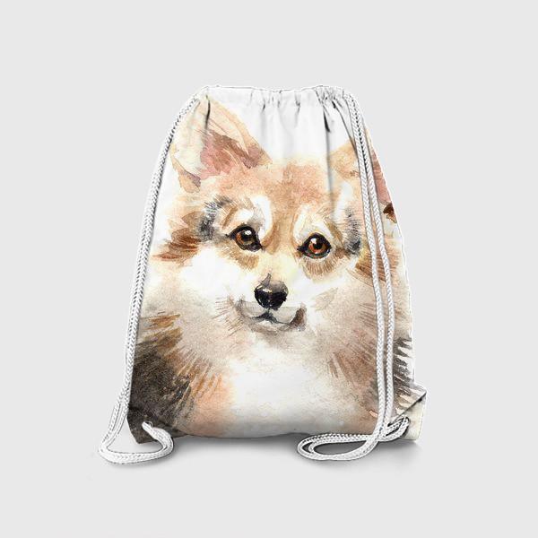 Рюкзак «Собака Корги»