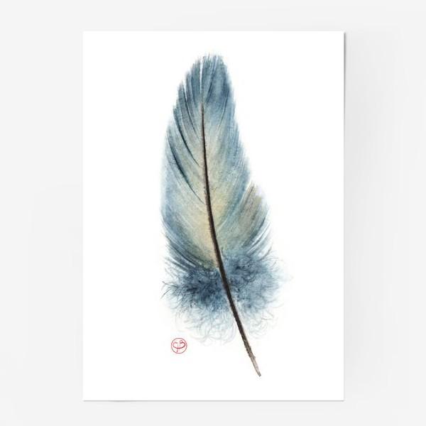 Постер «Перышко»