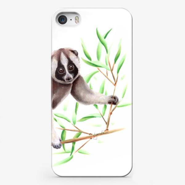 Чехол iPhone «Лемур Лори»