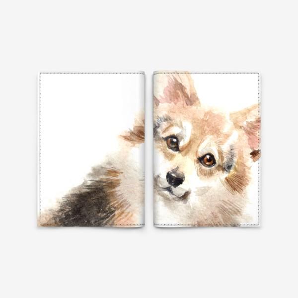 Обложка для паспорта «Собака Корги»