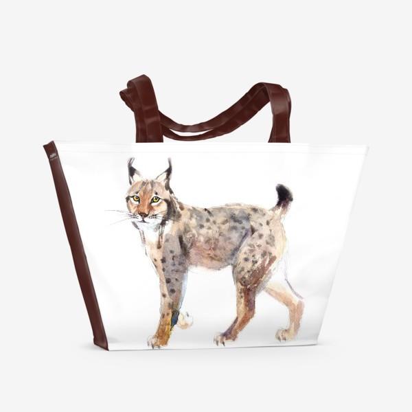 Пляжная сумка «Рысь»