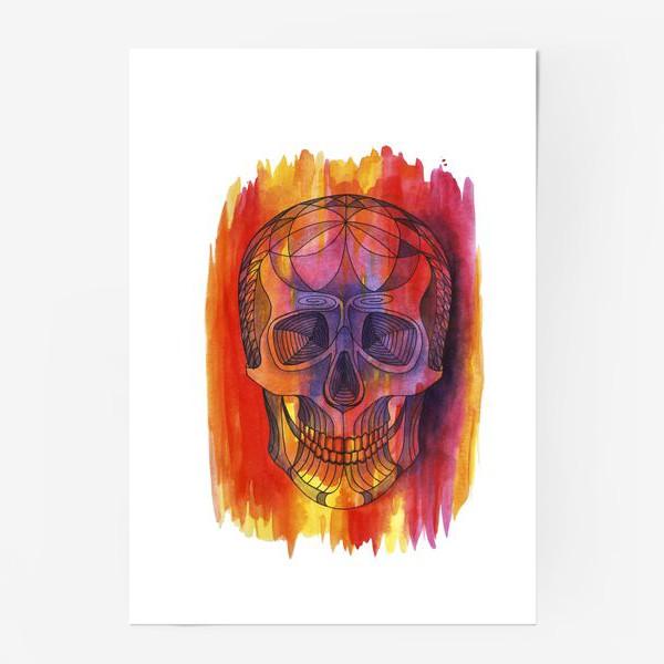 Постер «Череп»