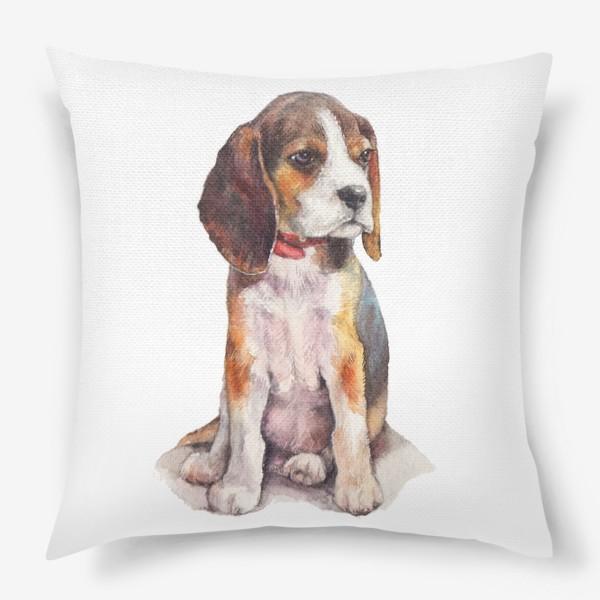 Подушка «собака бигль»