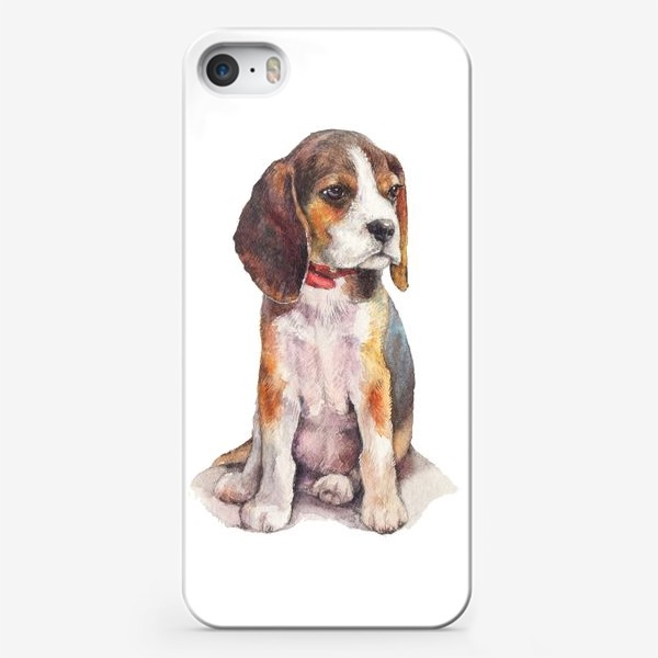 Чехол iPhone «собака бигль»