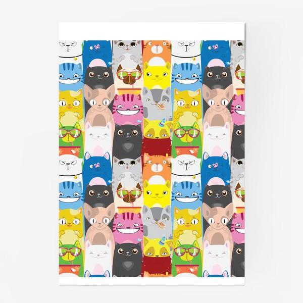 Постер «Кошаки»