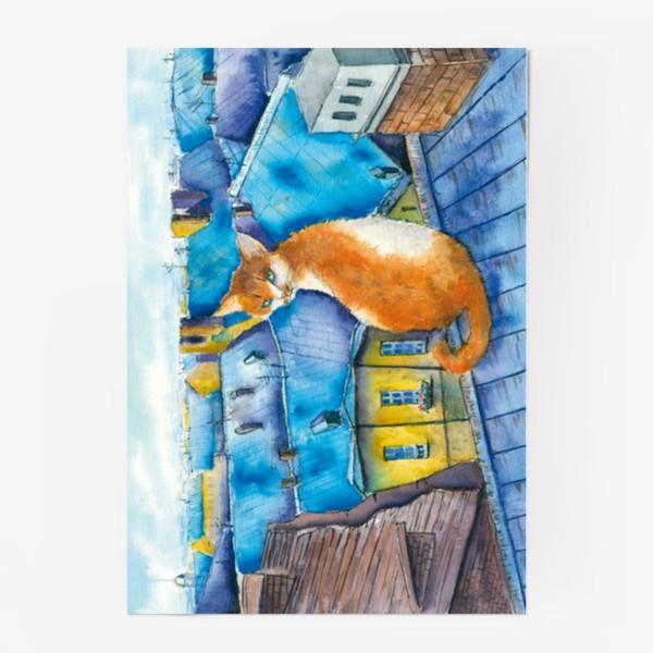 Постер «Котик на крышах Питера»
