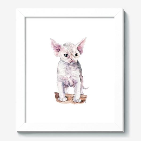 Картина «белый котенок девонрекс»