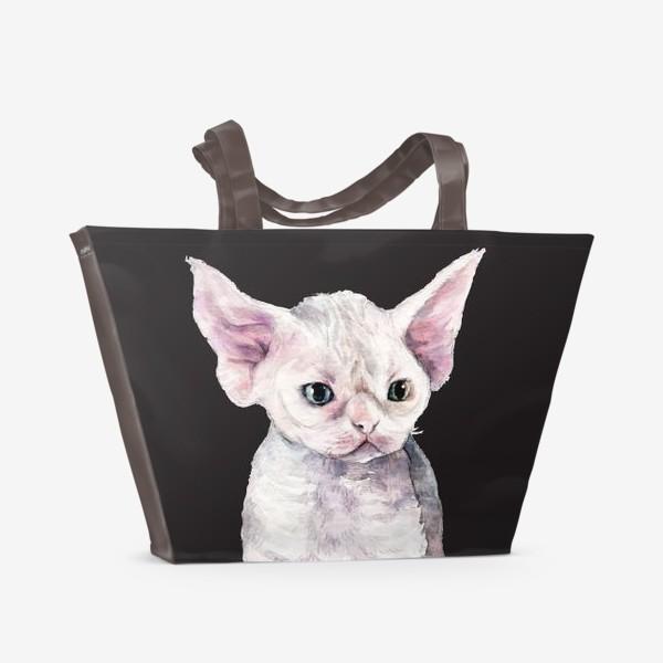 Пляжная сумка «белый котенок девонрекс черный фон»