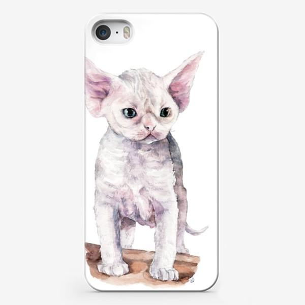 Чехол iPhone «белый котенок девонрекс»
