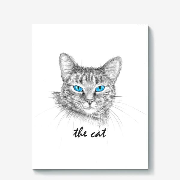 Холст «Кот. Голубые глазки.»