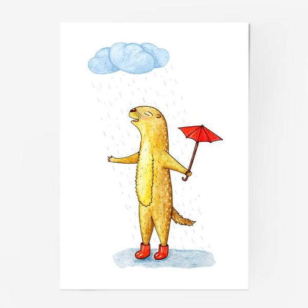 Постер «Суслик под дождем»