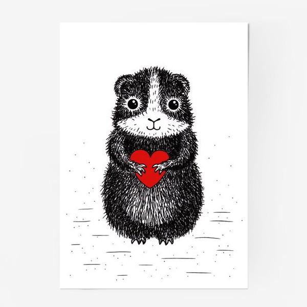 Постер «Морская свинка»