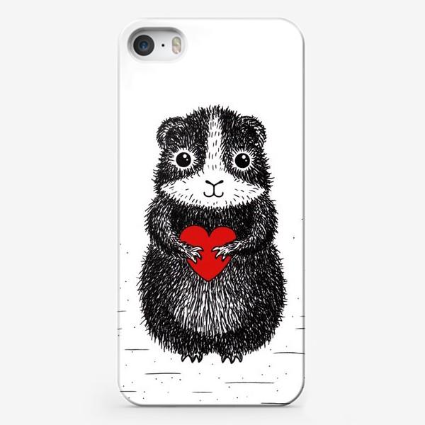 Чехол iPhone «Морская свинка»