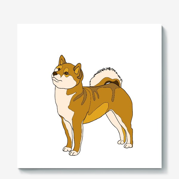 Холст «Dog breed of Shiba Inu»