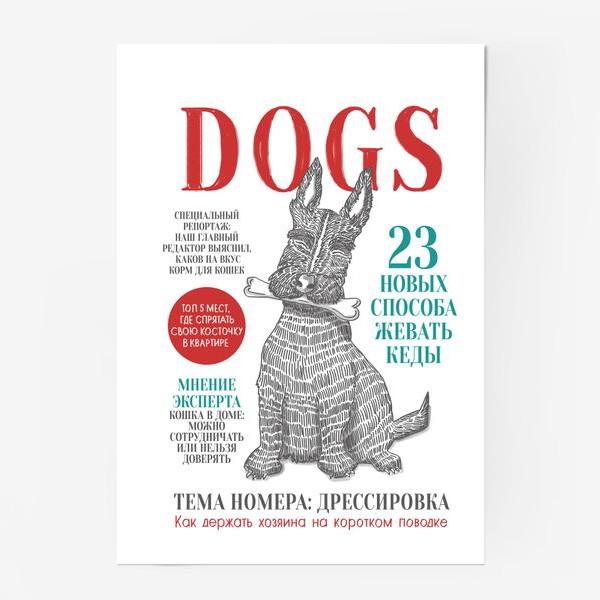 Постер «DOGS»