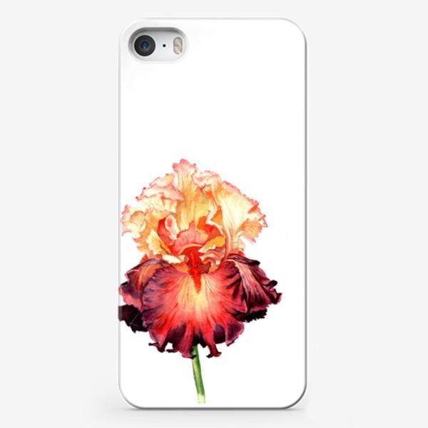 Чехол iPhone «Красный ирис»