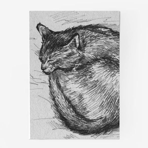 Постер «спящая кошка»