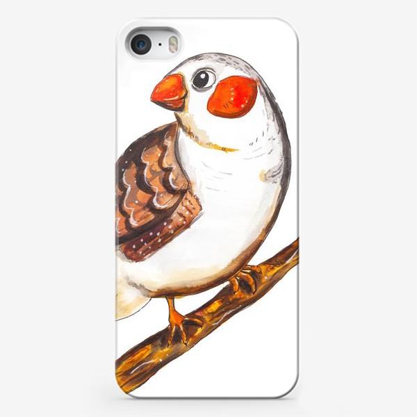 Чехол iPhone «Яркая и красивая амадина»