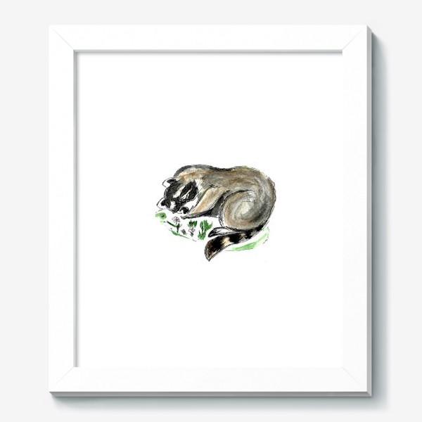 Картина «Енот спит»