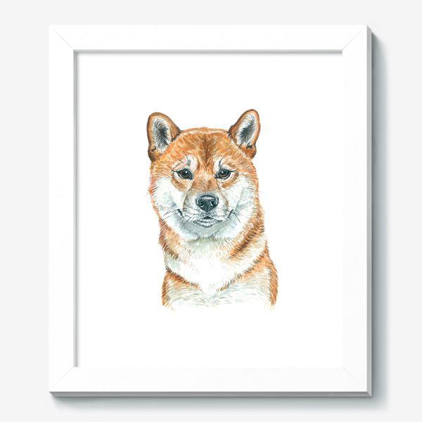 Картина «пес Шиба Ину »