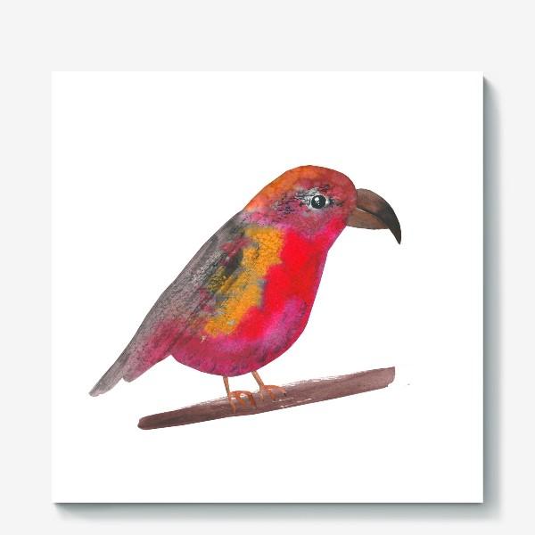 Холст «Птица Клёст-еловик»