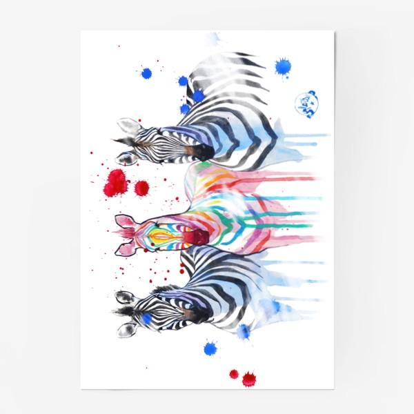 Постер «Especial»
