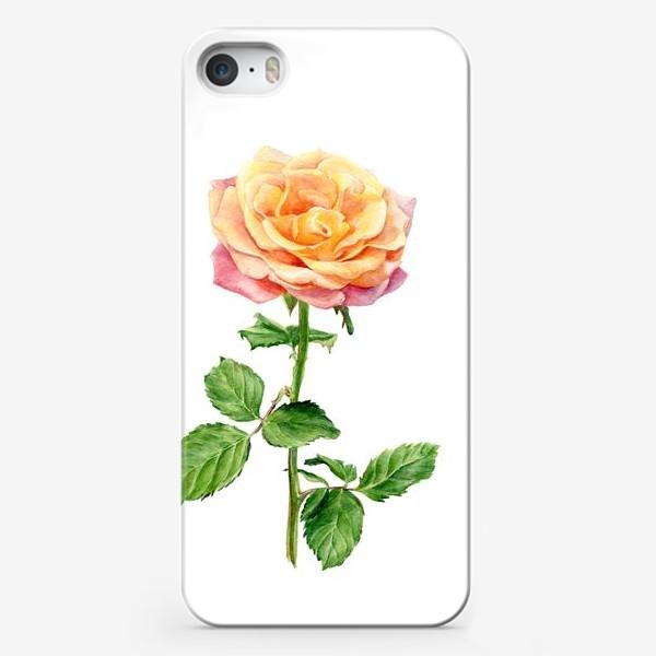 Чехол iPhone «Желтая роза»
