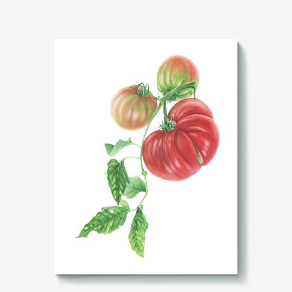 Холст «Гроздь спелых томатов»
