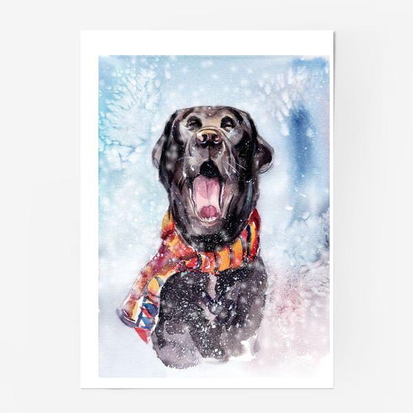Постер «Собака зевает»