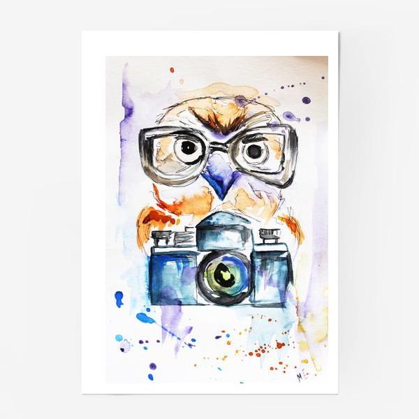 Постер «Сова и фотоаппарат »