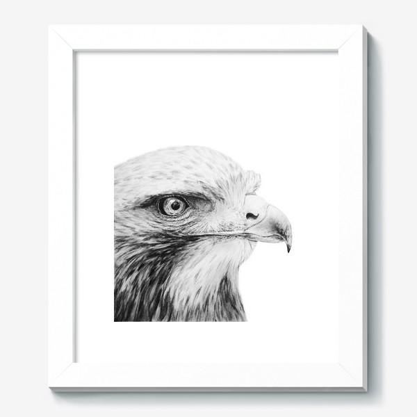 Картина «Орел - гордая и красивая птица!»